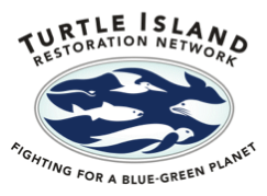 Turtle_Island.png